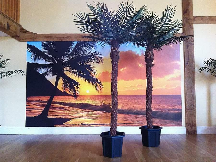 Artificial Palm Tree hire, Berkshire, Buckinghamshire